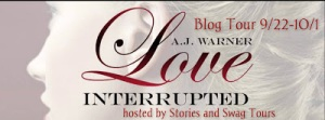 love interrupted tour banner